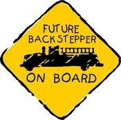 Future back Stepper Decal